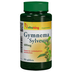 Gymnema Sylvestre 400mg (90) tabletta