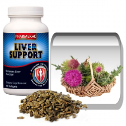 Liver Support – Máriatövis 1000 mg gélkapszula 90 db