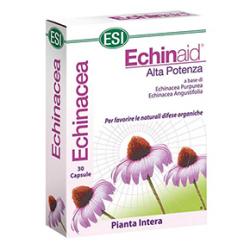 Echinaid Echinacea kapszula 30db