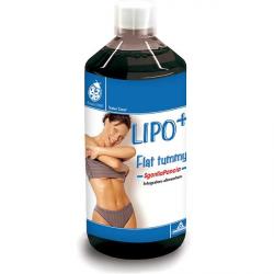 Specchiasol Lipo+ LipoDrink - Lapos Has kúra 500ml